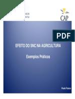 SNC_AGRICULTURA-ExemploSilvicultura