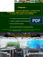 pisciculture hor sol