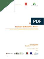 Manual de Normas Tecnicas e Protocolares