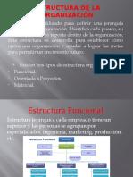 Estructura de la Organización.