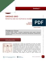 01-lectura_UNIDAD_UNO_numeros_reales.pdf