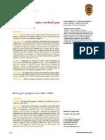 GB AM.pdf