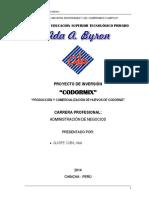 MODELO DE PROYECTO.pdf