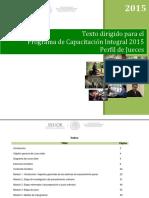 01-Texto-dirigido-Perfil-JUECES.pdf