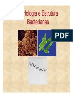 aula 3.1- estrutura célula procariótica