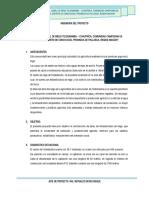 INGENIERIA DEL PROYECTO-CANAL DE RIEGO