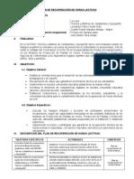 PLAN RECUPERACIÓN HORAS LECTIVAS DOCENTE CETPRO AGROP 2020