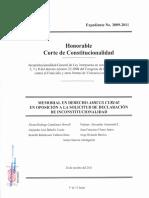 AmicusFemicidio.pdf