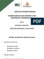 AULA+4+ORGANIZAÇÃO+DO+SN+E+FUNÇÕES+BÁSICAS+DAS+SINAPSES+E+DAS+SUBSTÂNCIAS+TRANSMISSORAS