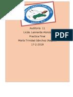 TRABAJO FINAL AUDITORIA 11.docx