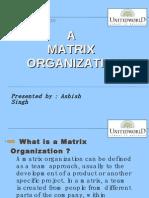 A Matrix Organization