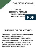 SISTEMA-CARDIOVASCULAR.pptx