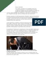A dura lição de governança corporativa.docx