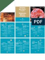 PSM - Christmas and New Year programme 2010-2011 en-De
