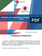RELATÓRIO_DE_FEMINICÍDIO_-_2017_-_GRÁFICOS.pdf