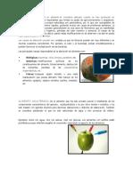 220443872-ALIMENTO-ALTERADO.docx