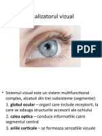 Analizatorul vizual2