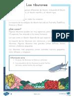 sa-t-l-51771-los-tiburones-comprension-lectora-de-atencion-a-la-diversidad