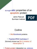 Peptydil tRNA hydrolase 2