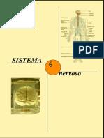 Sistema nervoso - ANATOMIA 2.pdf