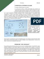 Neuro006-parte3.pdf