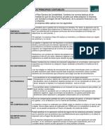 LOS PRINCIPIOS CONTABLES.pdf