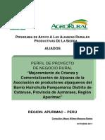 OFERTA Y DEMANDA DE CARNE DE ALPACA EN COTARUSE.pdf