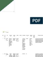 Formato RAE horizontal