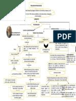 mapa evaluacion PSICOANALISIS (1)