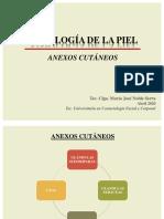 ANEXOX CUTÁNEOS