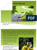 Oprea Dumitru Catalin Referat TCIF 2.pptx
