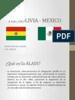 Tlc Bolivia - Mexico Presentacion