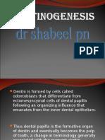 dentinogenesis-ullaspr-090826101811-phpapp01.ppt
