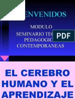 CEREBRO_Y_PARENDIZAJE-4.ppt