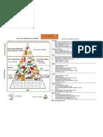 Piramide alimentaria 2