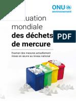 Global_mercury_waste_assessment_FR_Mercure.pdf