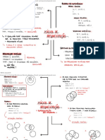 4Argumentação.pdf