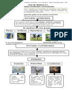 Guia 1 ciencias animales vertebrados e invertebrados