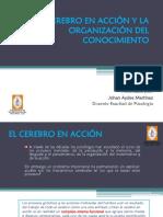 Clase III Organización del ccto.pdf