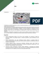 Citoplasma e organelas-apostila
