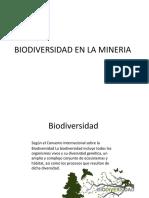 BIODIVERSIDAD EN LA MINERIA.pptx