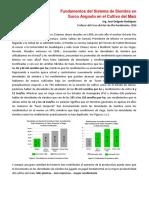 Sistema de Siembra en Surco Angosto en Maiz.pdf