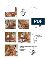 Manual D.L.M-alunas parte II.pdf