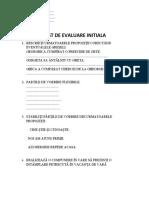 TEST DE EVALUARE INITIALA