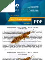Tarea 7 - Prueba objetiva abierta (POA).pptx