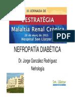NEFROPATIA-DIABETICA-J-GONZALEZ