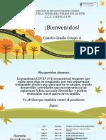 ACTIVIDADES 4 GRADO ABRIL-MAYO.pptx
