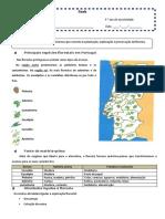 Ficha Informativa_silvicultura.docx
