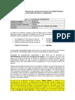 INFORME PARA EL PROCESO DE CAPITALIZACION DE UNA EMPRENDEDORA DEL MUNICIPIO DE ARAUCA (1) (1)