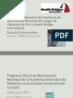guia_de_enseñanza_de_rcp_neonatal
